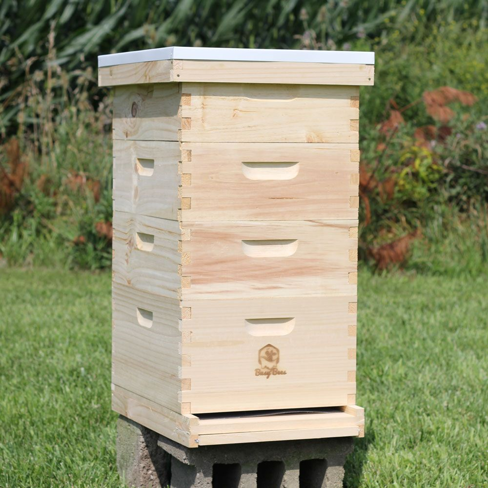 Beehive For Sale Honey Production Starter Kit Free Shipping Bee Hive Bee Keeping Bee Boxes
