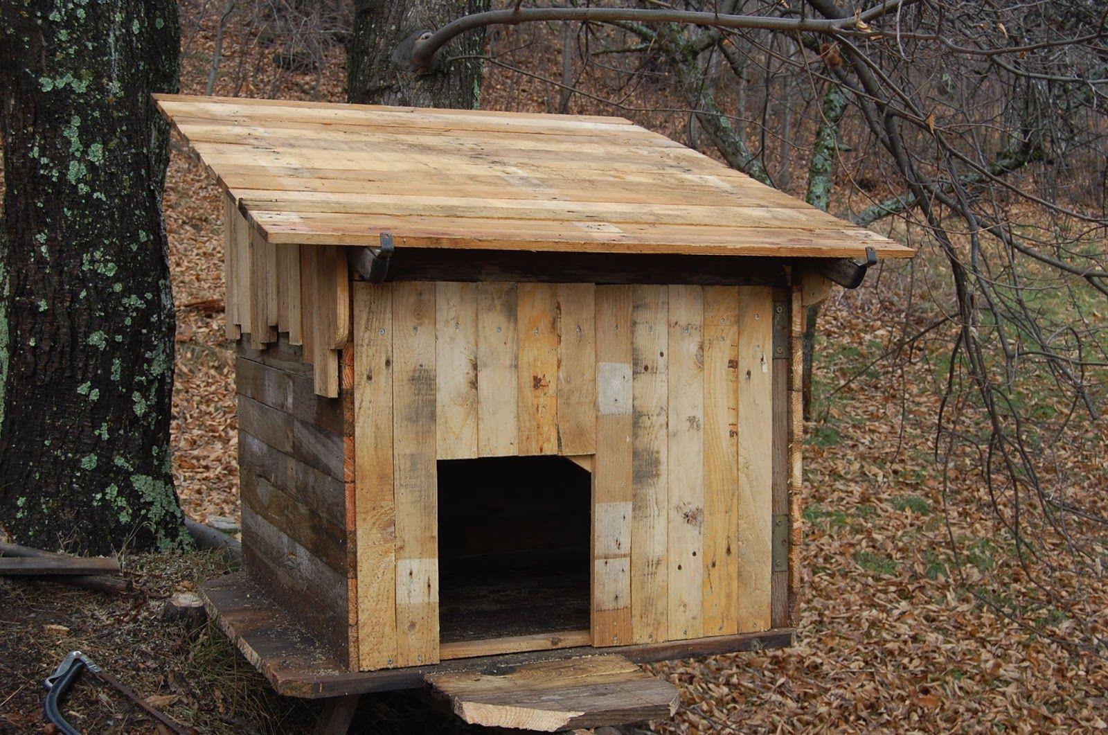 cl ture prot ge renard palettes pinterest bird houses outdoor projects et birds. Black Bedroom Furniture Sets. Home Design Ideas
