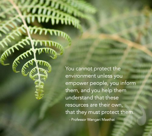 "Protect Nature Quotes: ""You Cannot Protect The Environment Unless You Empower"