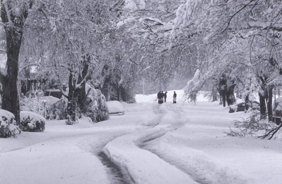 Al Com Vintage March 1993 Blizzard Covered All 67 Alabama Counties With Snow Snow Alabama National Weather Service