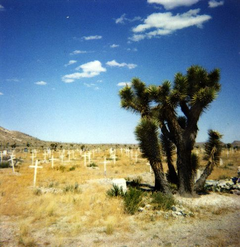 Goldfield Cemetery Places To Visit Cemetery Nevada