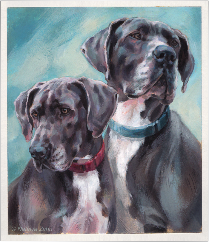 Great Dane dog portrait by Natalya Zahn Great dane dogs