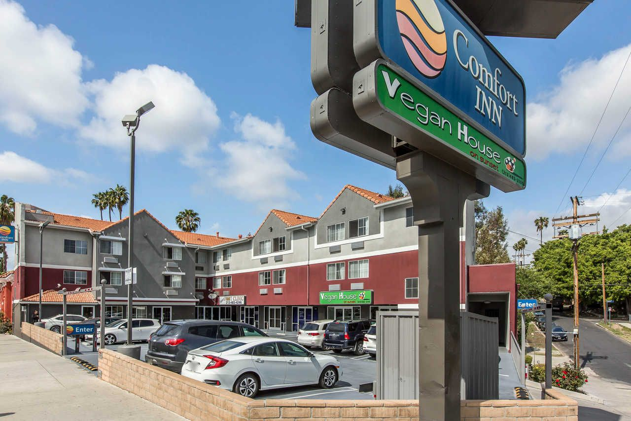 Hotels Near Sunset Boulevard Hollywood In 2020 Hollywood Hotel Los Angeles Los Angeles Hotels Burbank Hotels