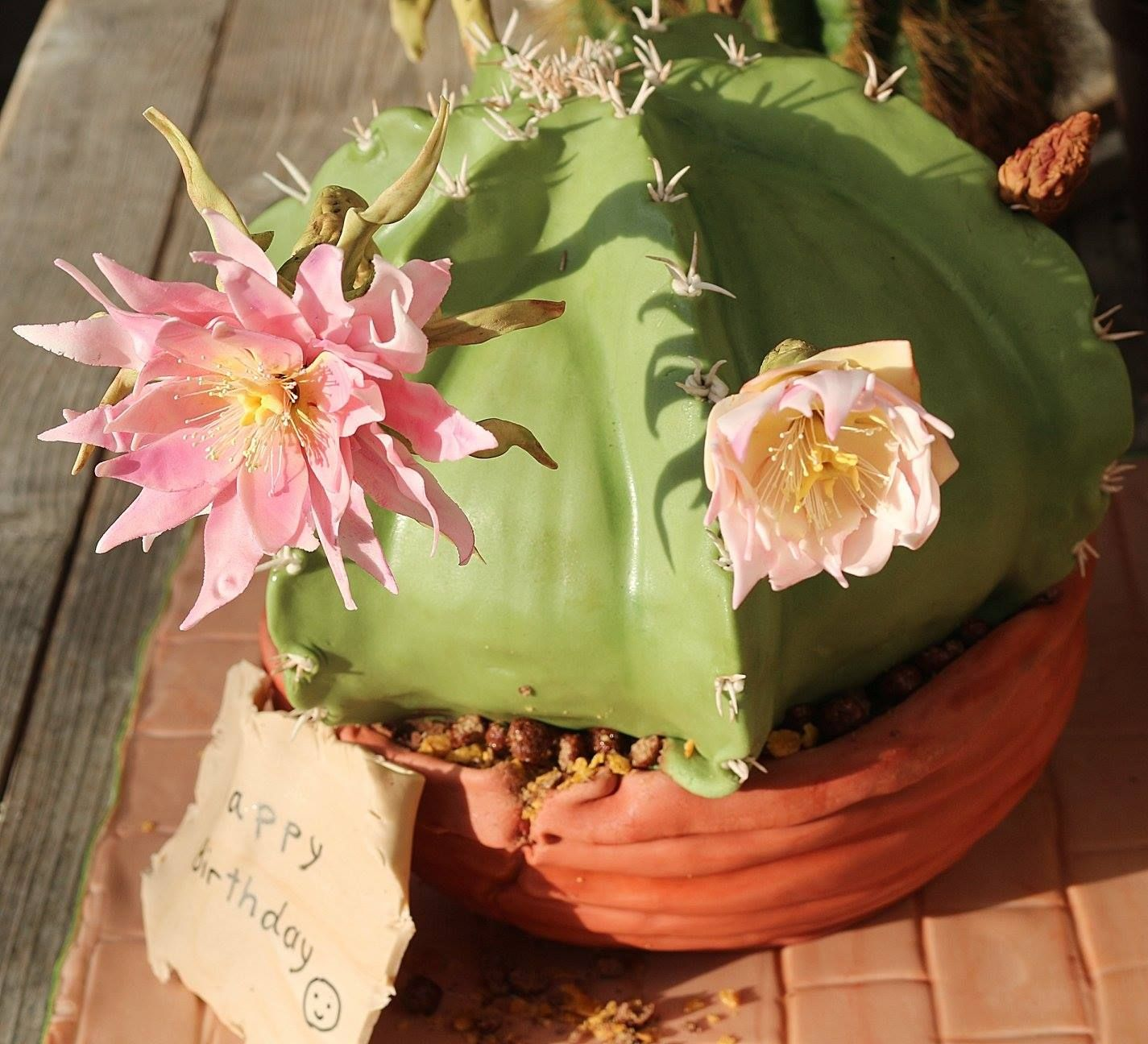 3d cactus cake and the caktus flowers r my best friends 3d cactus cake and the caktus flowers r my best friends 50th birthday izmirmasajfo