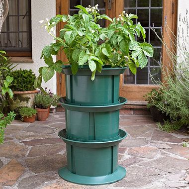 Pot Trays Gardening Potato grow pot in pots planters trays at the home of creative potato grow pot in pots planters trays at the home of creative kitchenware workwithnaturefo