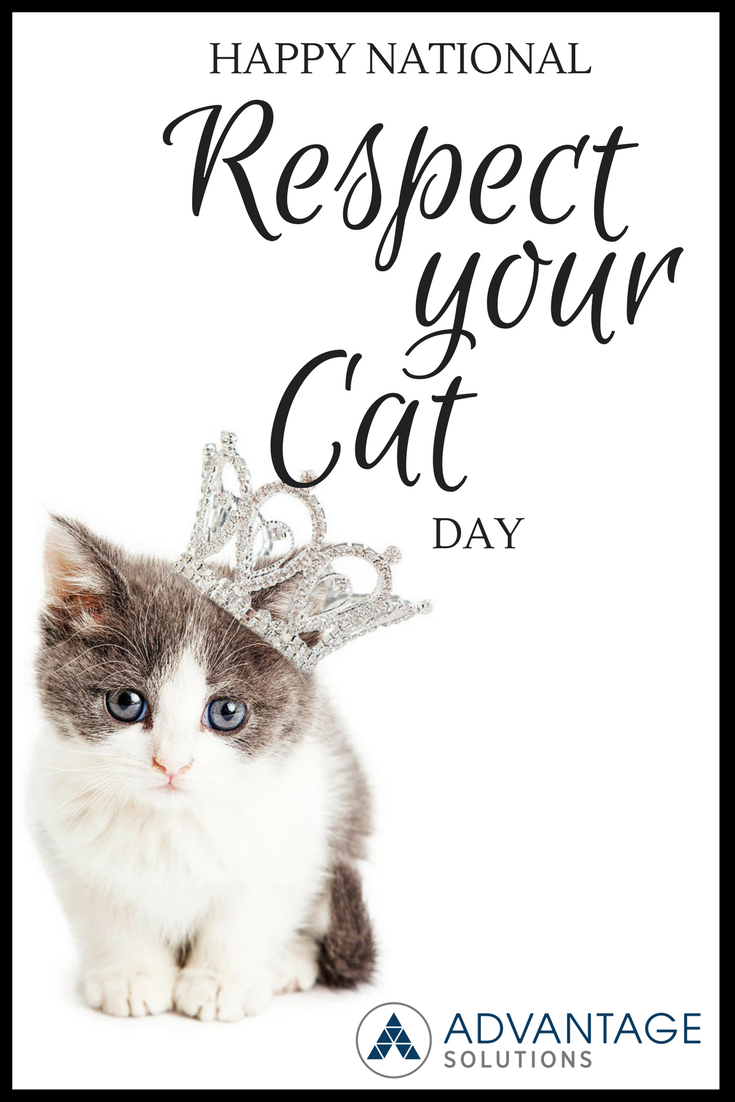 Did You Know It S Respect Your Cat Day If You Love Pets You Ll Love Being A Pet Food Brand Ambassador We Are Nowhiring App Cat Day Love Pet Food Animals