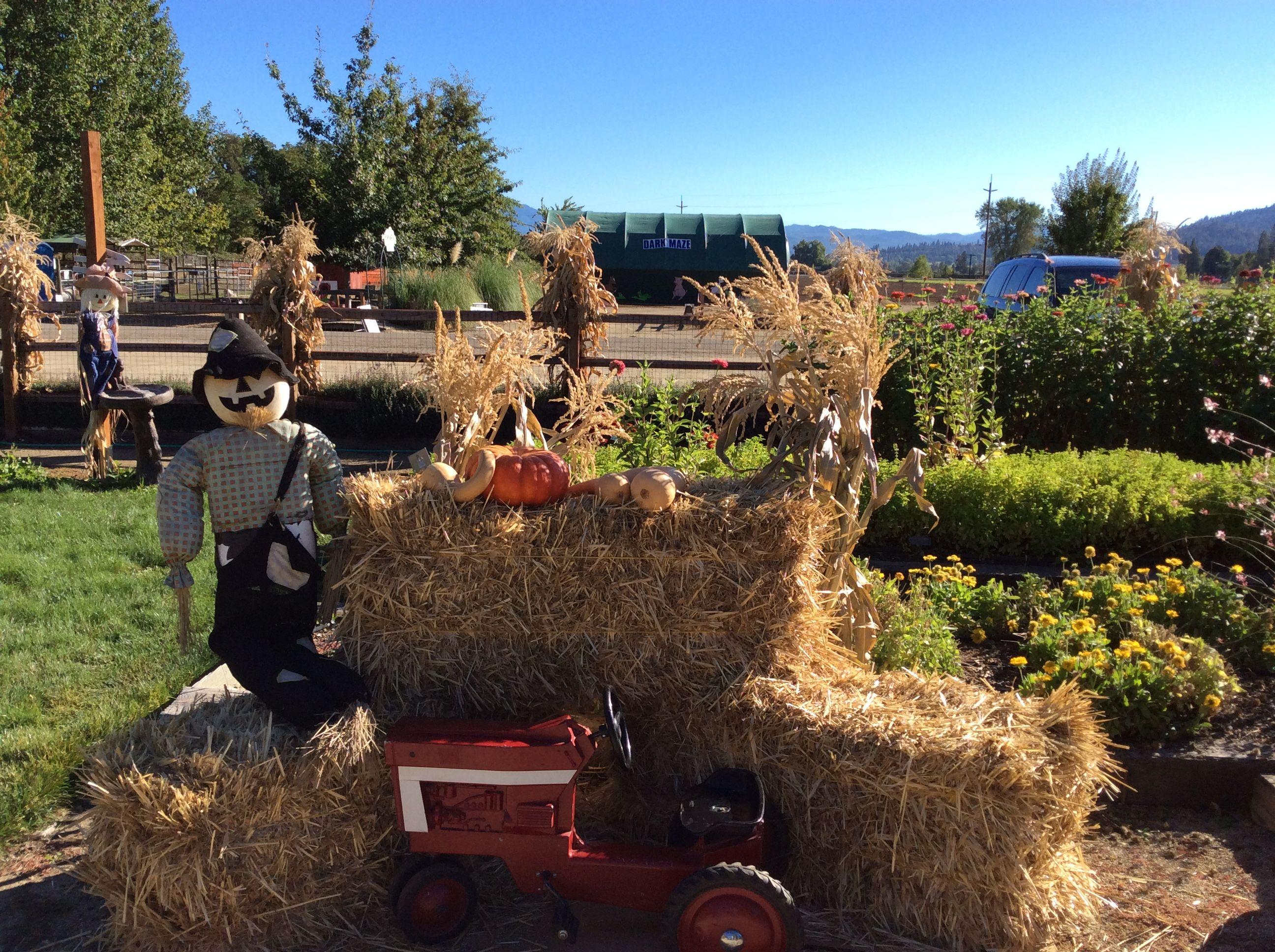 Seven Oaks Farms Central Point Oregon Windermere