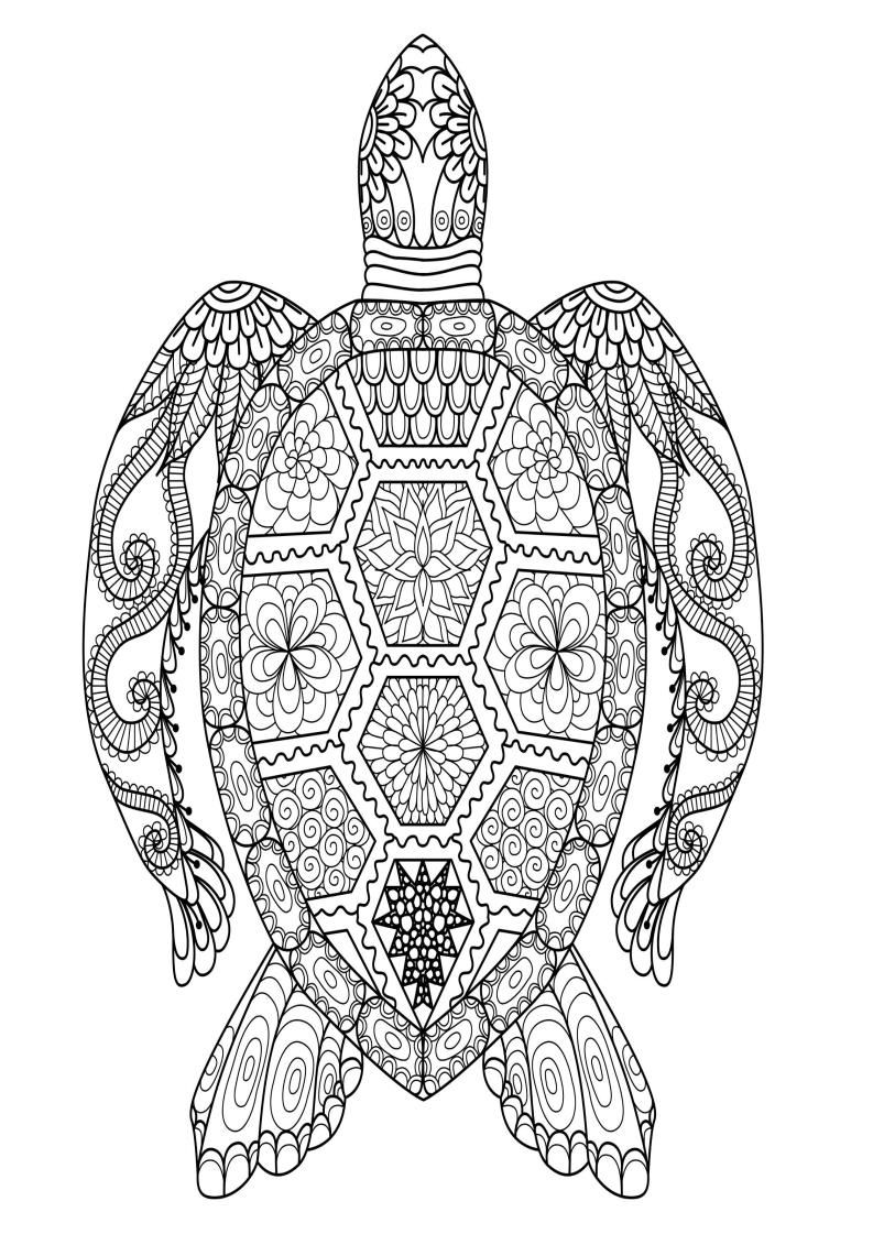 Mindfulness Coloring Page - Turtle in 2020 | Turtle ...