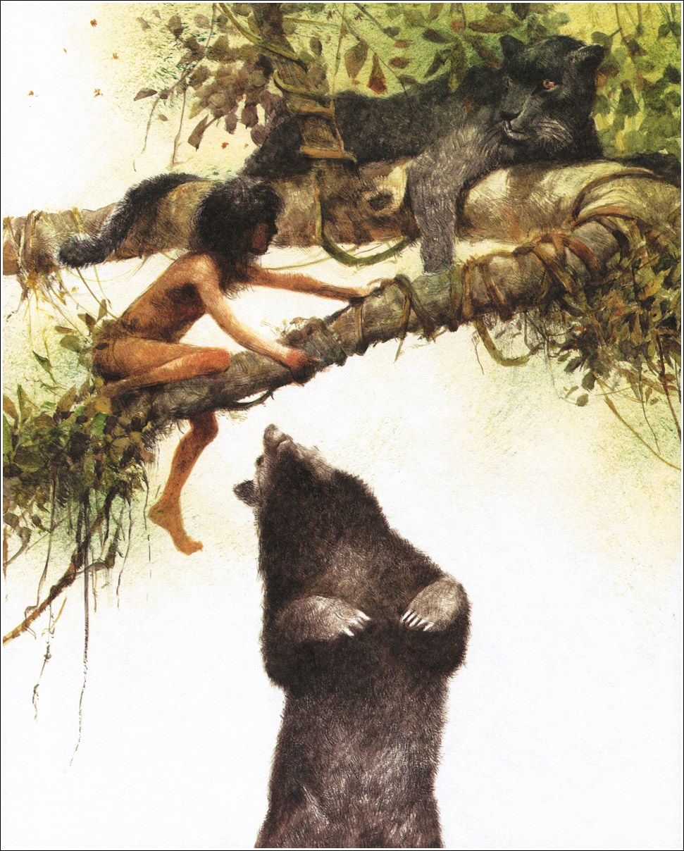 Jungle book kipling original illustrations for wizard