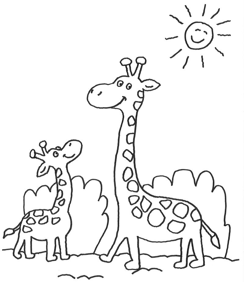 Ausmalbild Tiere Kostenlose Malvorlage Giraffenfamilie Kostenlos Ausmalbilder Ausmalbilder Tiere Giraffe