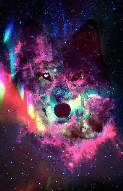 Wolf in galaxy background. Perty ain\u0027t it
