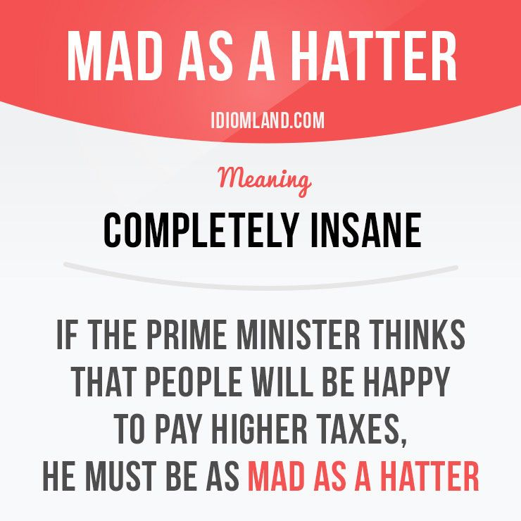 """Mad as a hatter"" means ""completely insane"". Example: If the prime minister thinks that people will be happy to pay higher taxes, he must be as mad as a hatter."