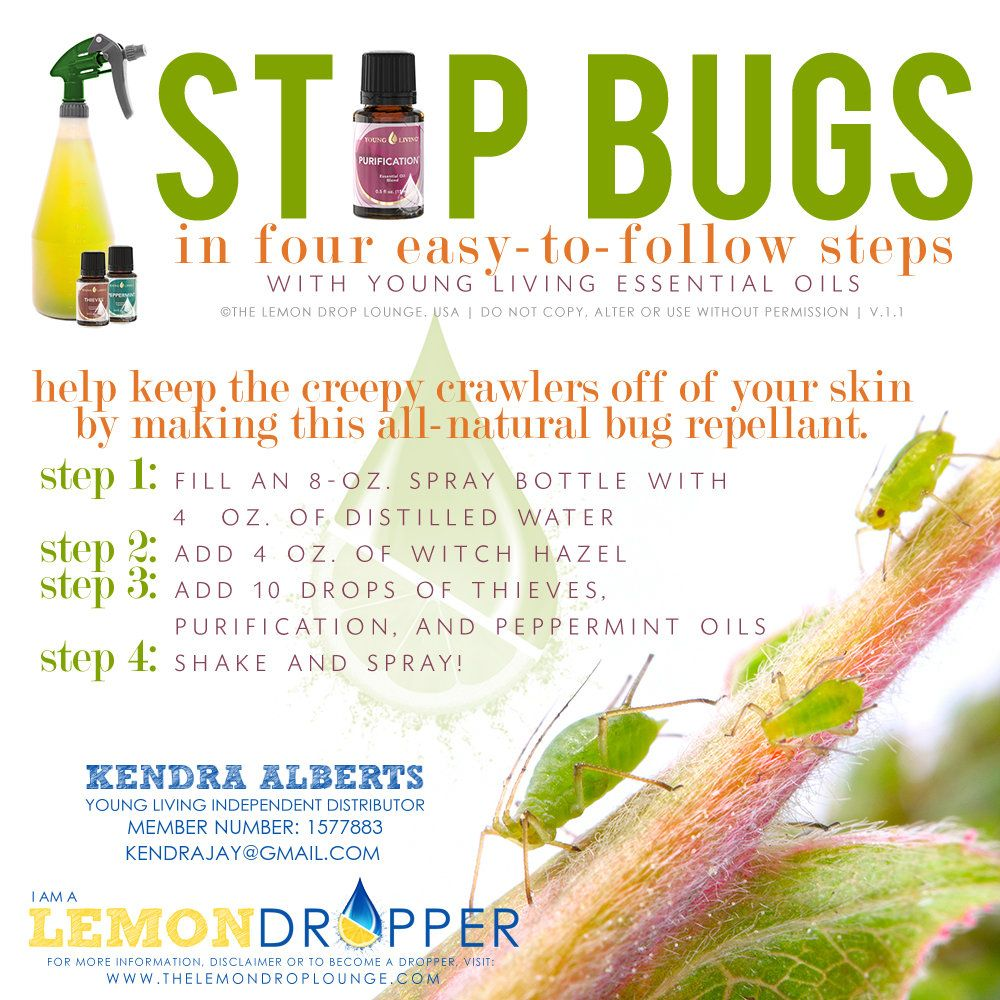 YLEO Young Living Essential Oils Bug spray, stop bugs. www.youngliving.org Distributor: 1347662