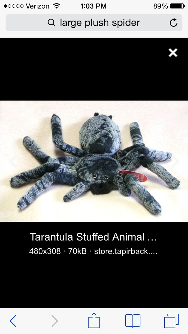 Can Anyone Help Me Find A Huge Plush Spider For My Son Giant