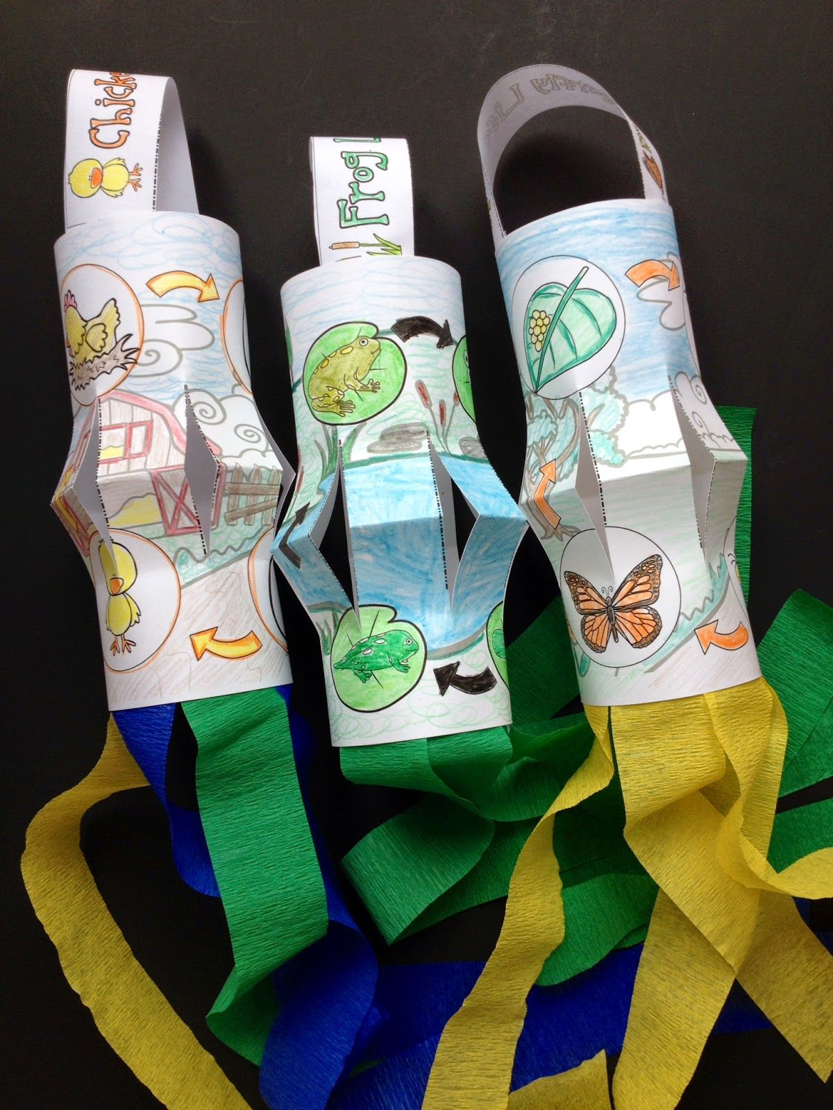 Life Cycle Windsocks for the life cycle of a butterfly craft, frog ...