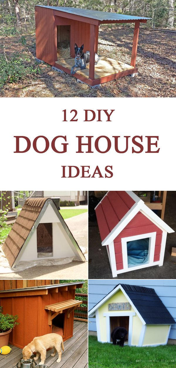 12 diy dog house ideas for your little friend do it yourself today pinterest dog houses. Black Bedroom Furniture Sets. Home Design Ideas