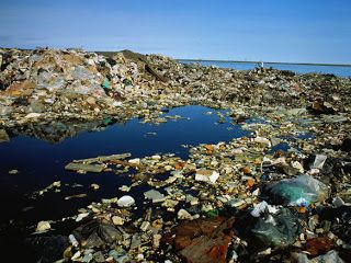 The Curs Of North Pacific Gyre Collect Trash Mostly Bits Microscopic Plastic