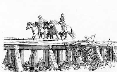 Broen er sandsynligvis bygget med det formål, at få hæren hurtigere sydpå til Dannevirke. Ravningebroen er et mægtigt stykke ingeniørarbejde, og den var Danmarks længste, indtil Lillebæltsbroen blev bygget.