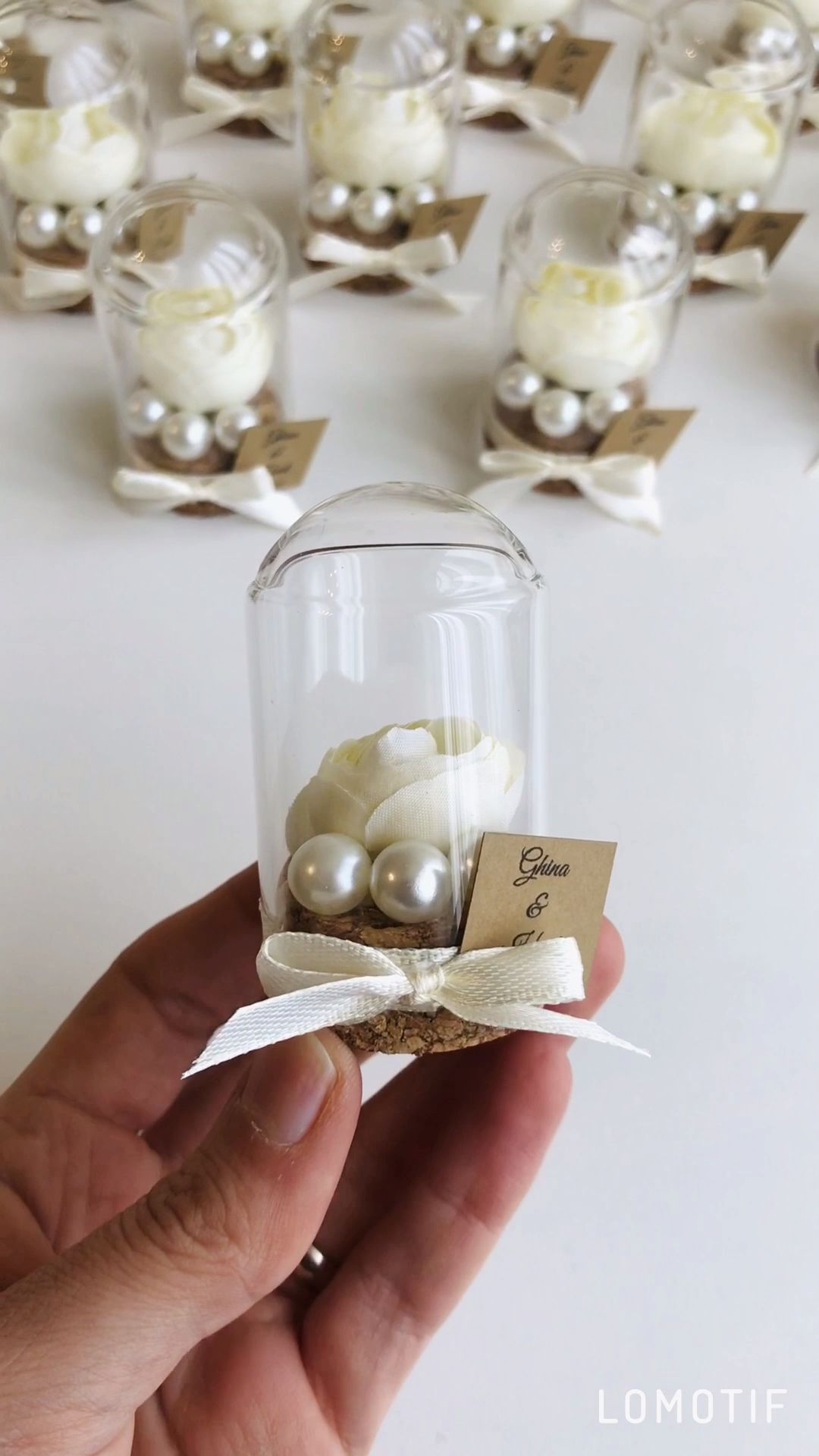10pcs Rose Dome Bell Jar Favors, Wedding Favors For Guests, Beauty & the Beast Favors, Bridal shower Favor, White Favors, Ivory Party Favors