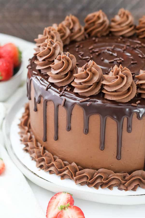 This Chocolate Cake Recipe truly is the BEST EVER! You