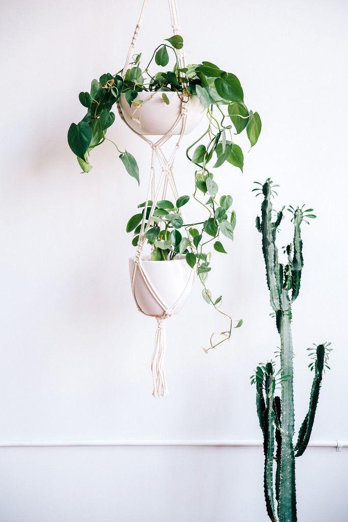 Modern Macrame Double Plant Hangers