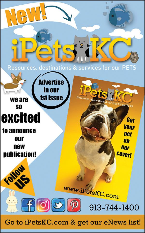 Please, check out our new publication iPetsKC City pets