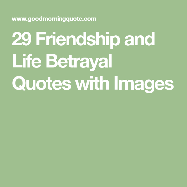 Quotes About Friendship Betrayal Adorable 29 Friendship And Life Betrayal Quotes With Images  Betrayal