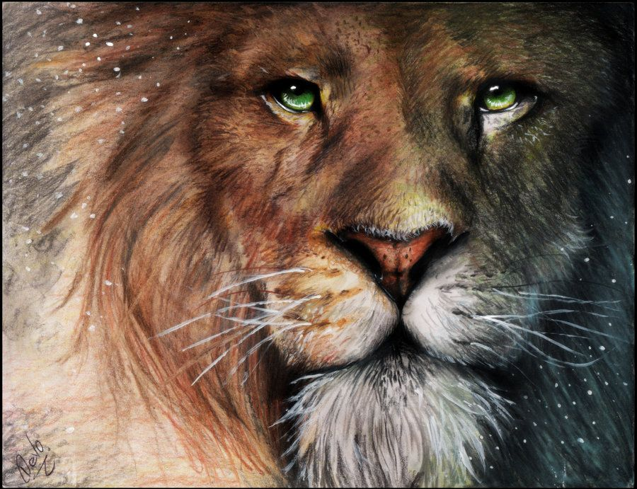 """Another pinner: """" Aslan - Chronicles of Narnia by ~Devoratus on deviantART."""" Lion of Judah. You are the great I AM"""
