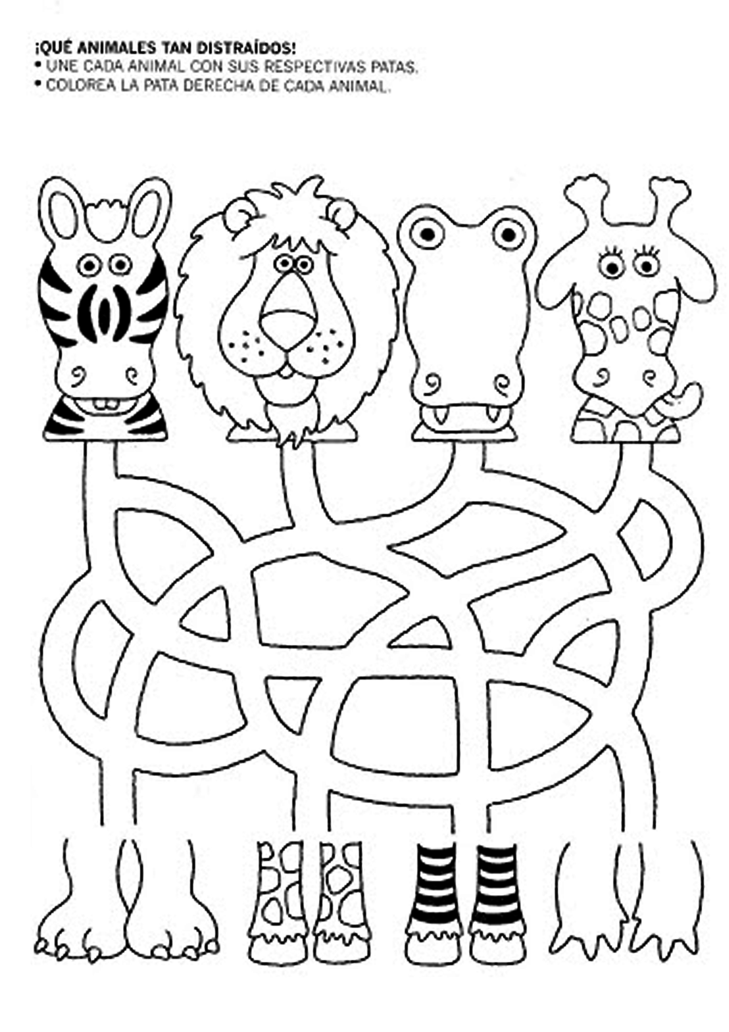 Colouring worksheets for lkg - Animales Y Sus Patas Animal Headsmazelkg Worksheetsprintable
