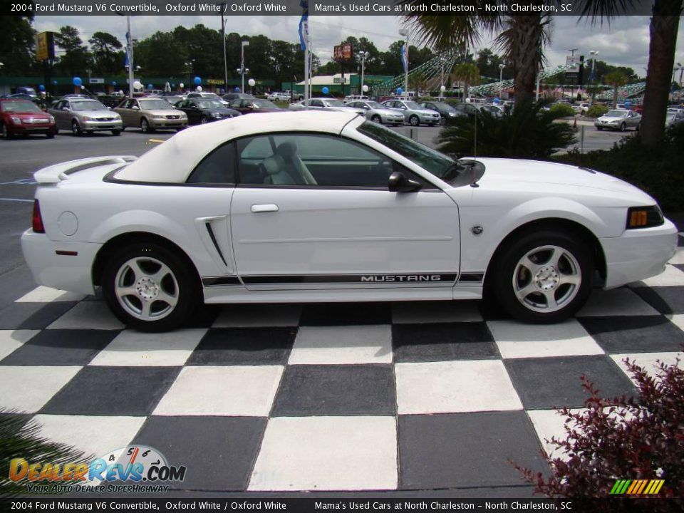 2004 White Mustang 2004 Ford Mustang V6 Convertible Oxford White Oxford White Photo 6 2004 Ford Mustang Ford Mustang V6 Mustang