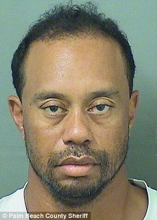 Ejikennam Blogspot Com Tiger Wood Arrested For Dui See His Cute Mug Sh Tiger Woods Mug Shots Celebrity Mugshots