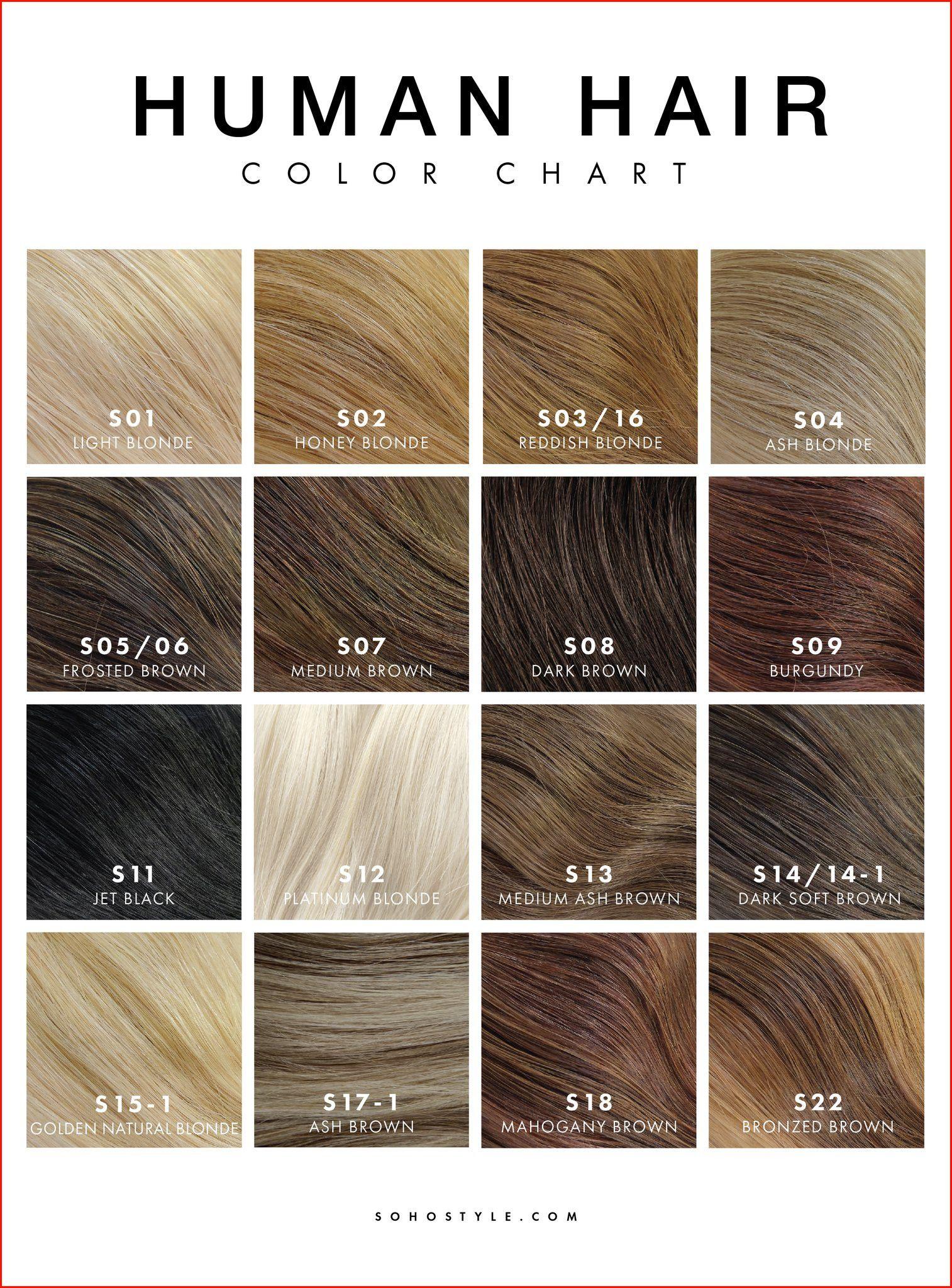 Inoa Hair Colour Chart India In 2020 Hair Color Chart Hair Dye Color Chart Loreal Hair Color Chart