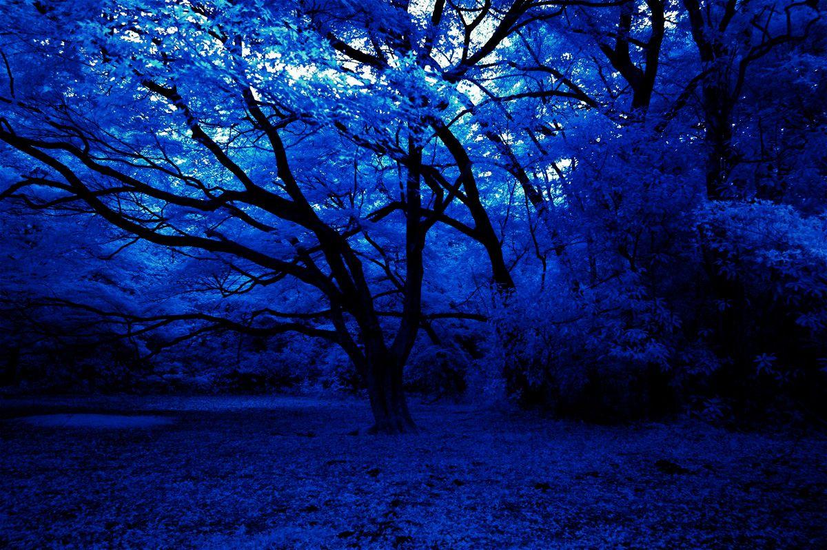 Dark Blue Things Tumblr