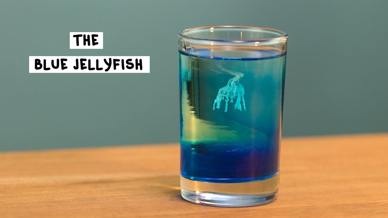 pin on youtube the blue jelly fish