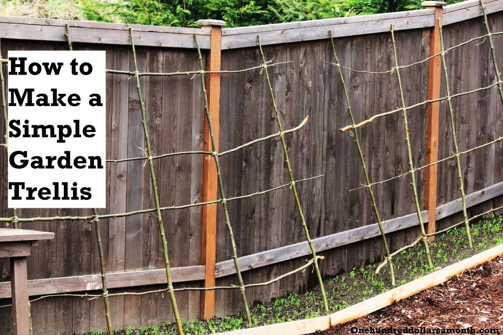 How to Make a Rustic Pea or Bean Trellis Out of Sticks... Love it!