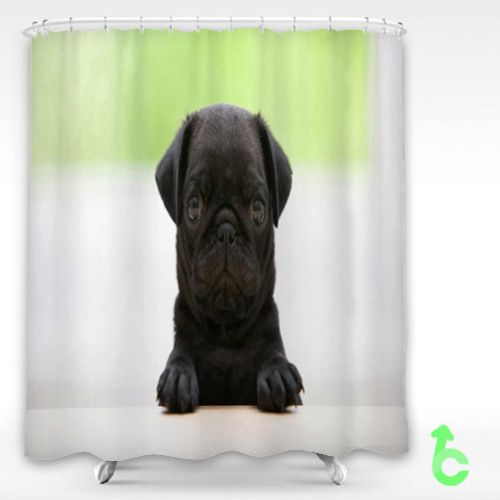Cheap Dog Black Pug Puppy Shower Curtain