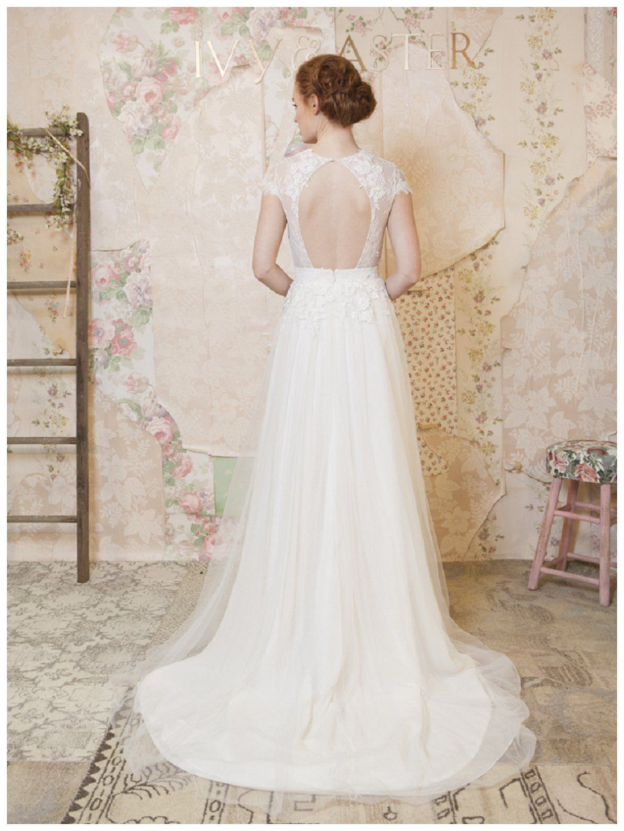 Ivy Aster Spring 2016 Collection Weddings Unveiled Inspiring Style For Southern Weddi Lace Top Wedding Dress Elegant Wedding Dress Wedding Dresses Lace [ 1199 x 900 Pixel ]