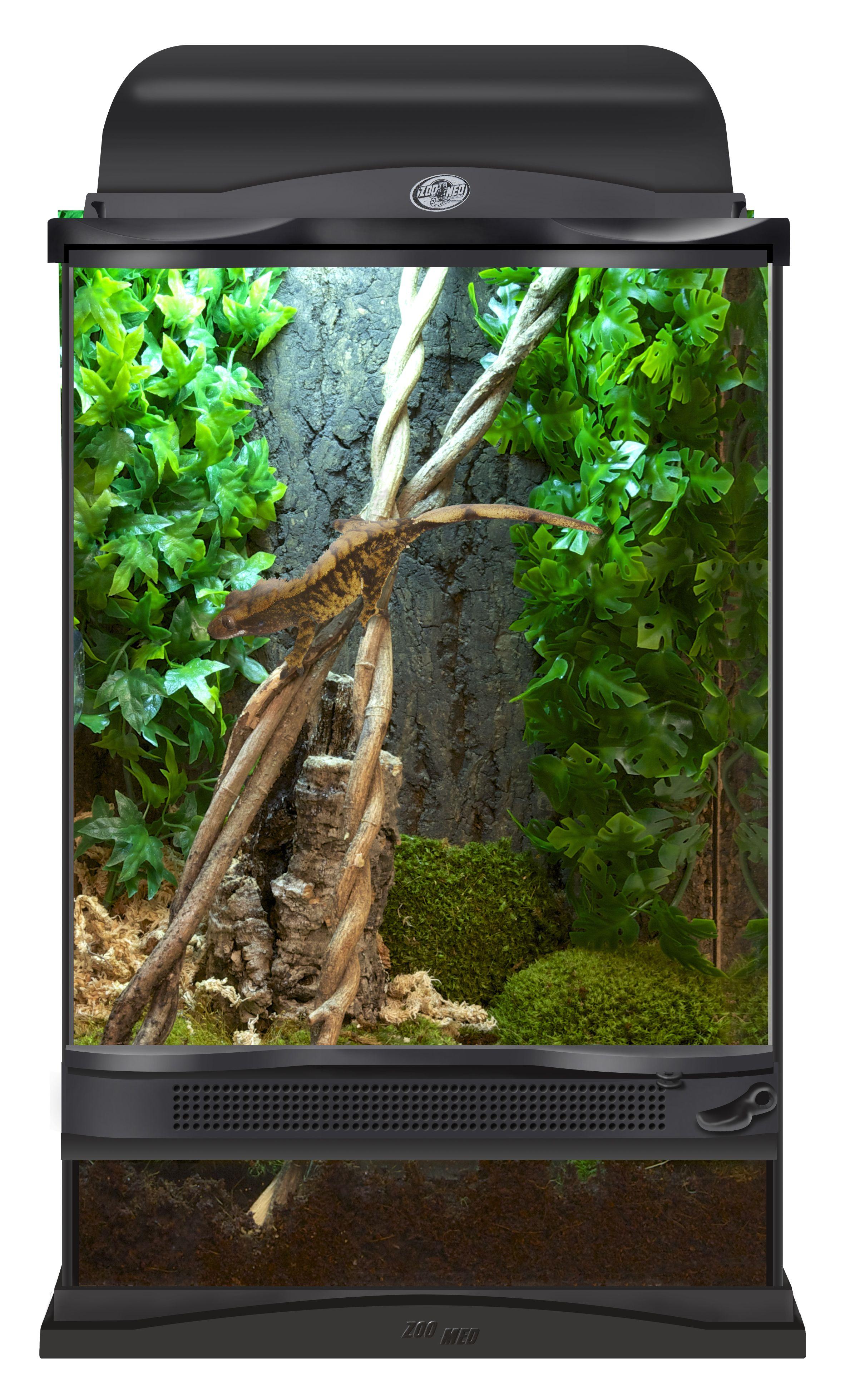 #1 In Reptile Products Worldwide Gecko Terrariumterrarium Ideasterrariumsvivariumcrested