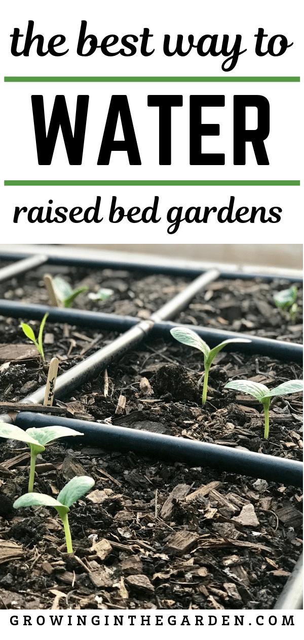 Best Way To Water Raised Bed Gardens Raised Garden Beds 640 x 480