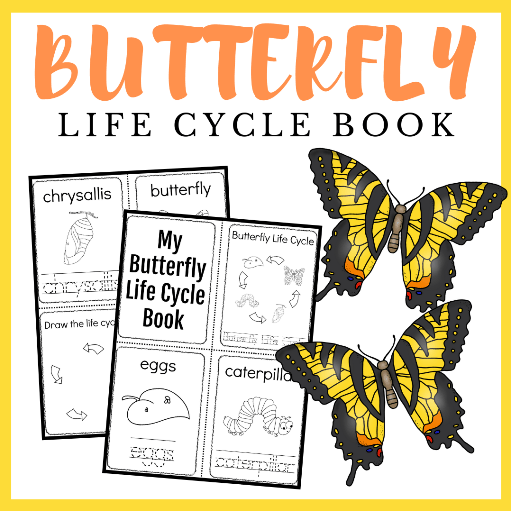 Butterfly Life Cycle Printable Book In