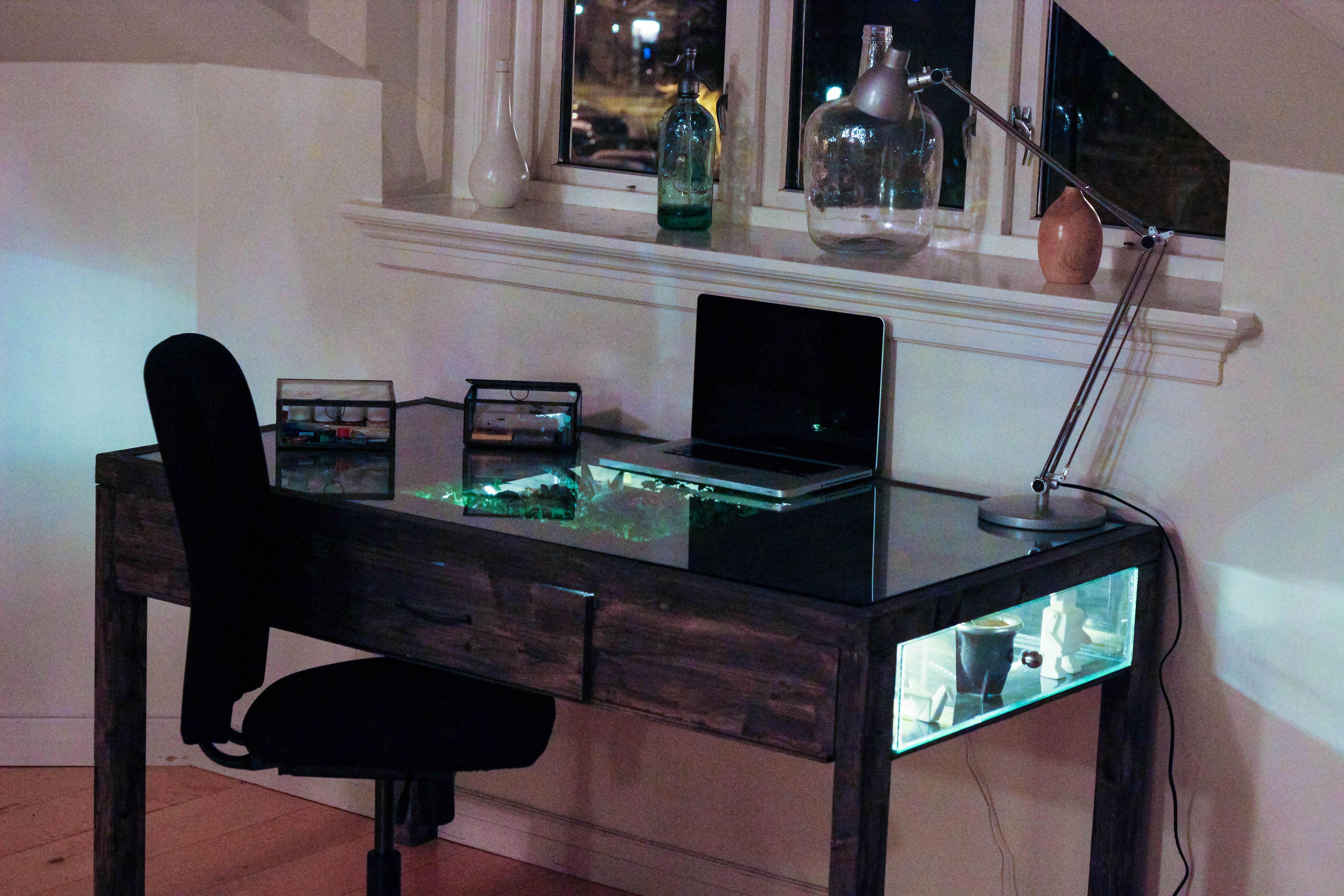 Terrarium desk - with computer.