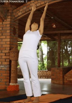 yoga sun salutations  surya namaskar hatha yoga poses