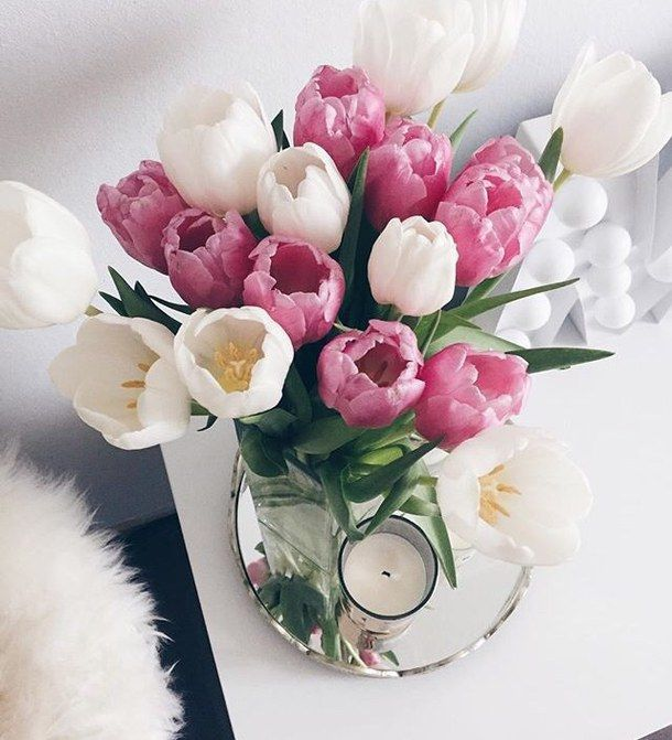 a9de3579 background, bouquet, camera, chanel, colorful, dior, flowers, inspiration,  nike, photo, photograph, room, spring, vintage, wallpaper, inspiriert