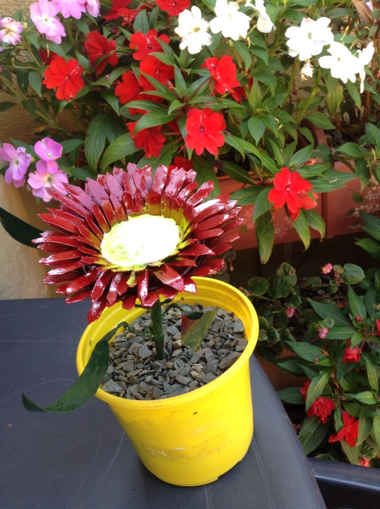 Fabulous flower