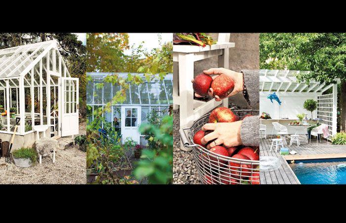 Galleri med bilder på våra olika växthus och orangerier ...