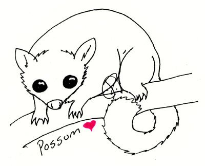 Possum By Dragonneko Animal Embroidery Designs Animal