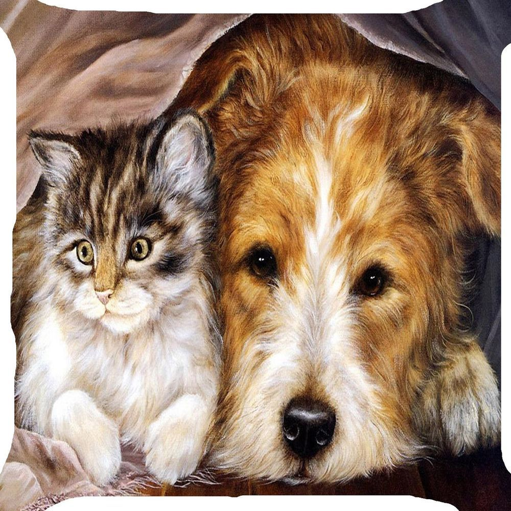 Pin On Cat Dog Best Pet Friends Pillow Cushion Cover Funny Kitty Puppy 2 Side Image Zipper 18