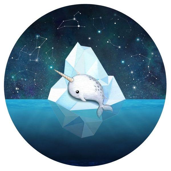 Baby Narwhal On Iceberg Art Print