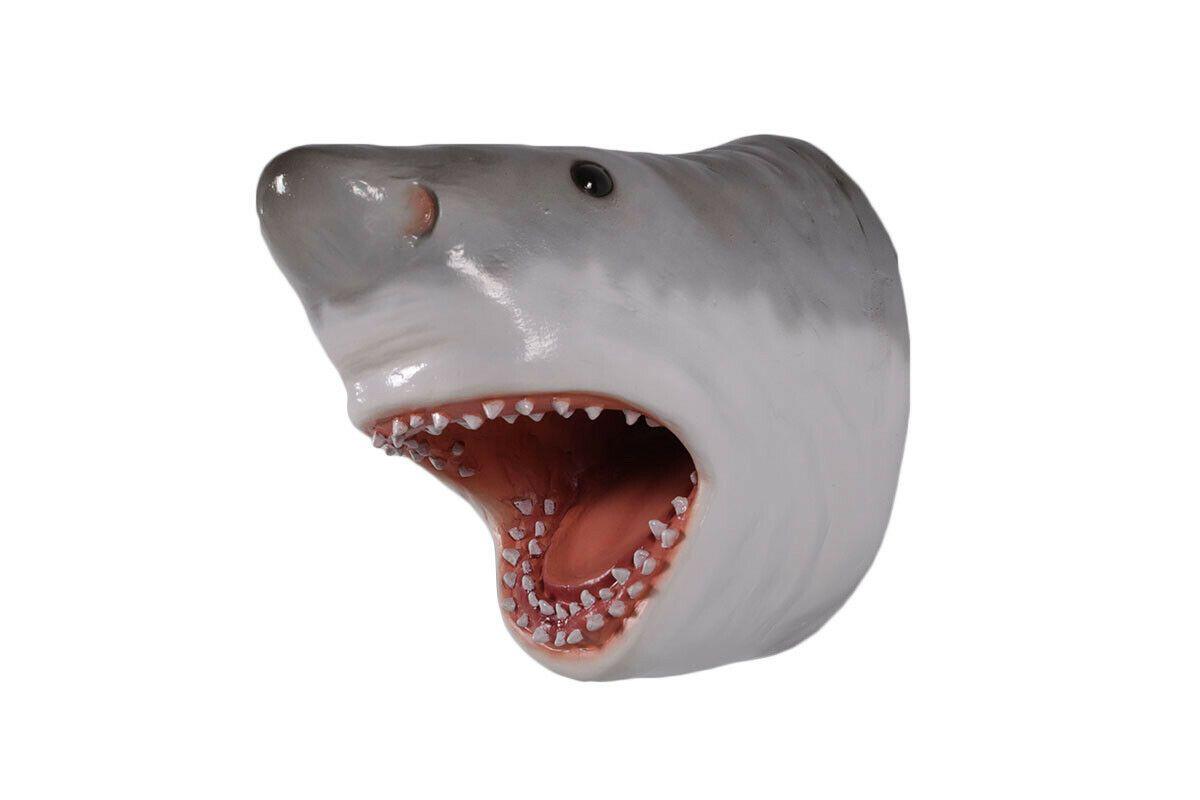Great white shark head apex predator sea life trophy wall