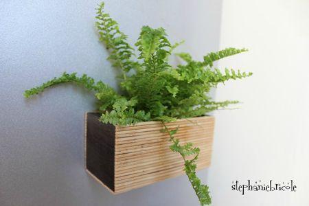 diy déco végétale - magnet vegetal – faire soi –même un pot